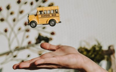 Emploi : Recherche conducteur/trice permis B pour transport scolaire